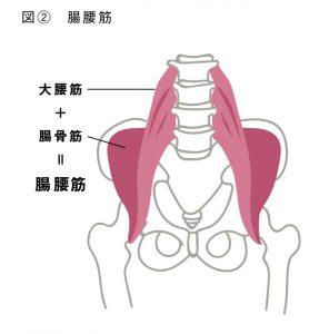 肛門エクササイズ・肛筋トレーニングとは図2